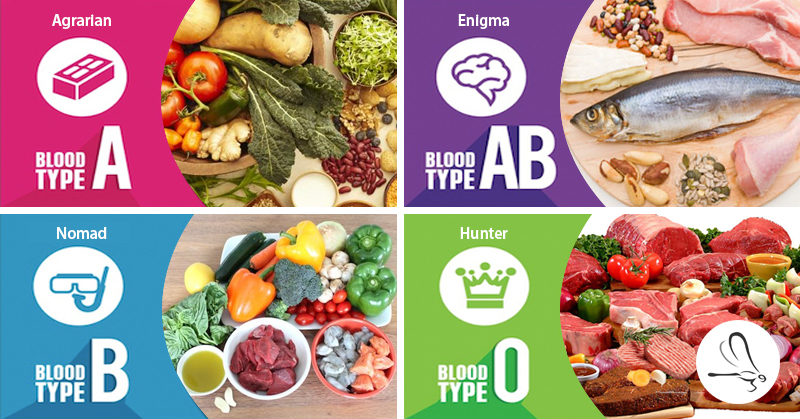blood type diet research paper The identified article studied the variation between ldl-cholesterol responses of different mns blood types to a low-fat diet however, the study did not directly.